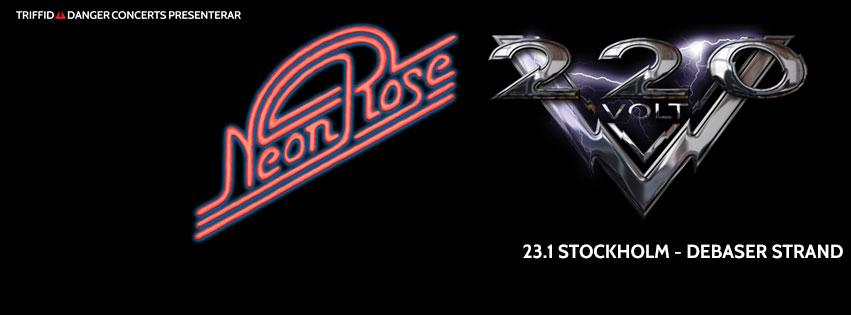 Neon Rose-220V